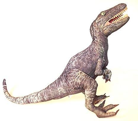 6848f52c651 Amazon.com  Universal Studios Jurassic World Park 24