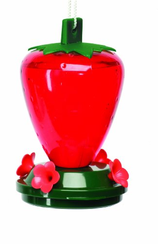 (Cherry Valley  Plastic Strawberry Hummingbird Feeder,   24 oz. Model 5555 )
