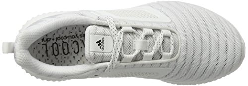 White Light Shoes Running Met Competition Two Women's Silver Grey adidas S80716 White F17 Climacool White Ftwr Grey Yq4RIn8