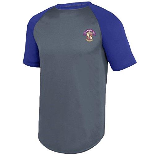 (Tau Epsilon Phi Fraternity Crest Wicking Short Sleeve Baseball Jersey 3X-Large Graphite/Purple)