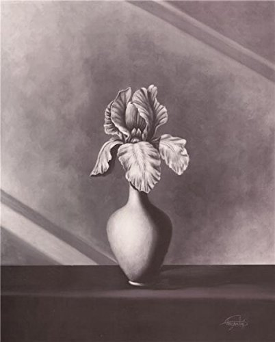 Perfect Effect Canvas ,the Beautiful Art Decorative Prints On Canvas Of Oil Painting 'Iris On Black-and-White Canvas Print', 16x20 Inch / 41x51 Cm Is Best For Study Gallery Art And Home Decor And Gifts