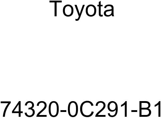TOYOTA Genuine 74320-0C291-B1 Visor Assembly