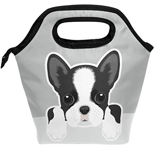 Pfrewn Dogs Design Lunch Bag Boston Terrier Portable Lunch Box Insulated Lunch Tote Soft Bento Cooler Thermal Bags