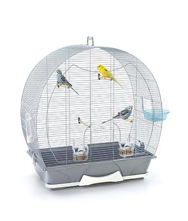 SAVIC Evelyne 50 - Jaula para pájaros (70 x 38 x 73 cm), Color ...