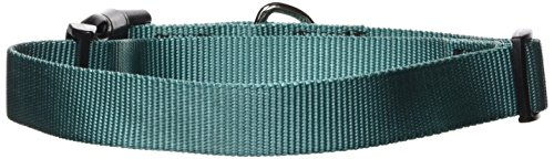 "Guardian Gear Nylon Adjustable Dog Collar, Fits Necks 18"" to 26"", Malibu Blue"