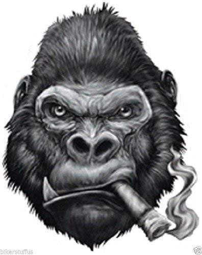 - MFX Design Gorilla Smoking Cigar Bumper Sticker Decal Toolbox Sticker Decal Laptop Sticker Decal Die Cut Vinyl - Made in USA Approximately 3.5 in. X 3 in.
