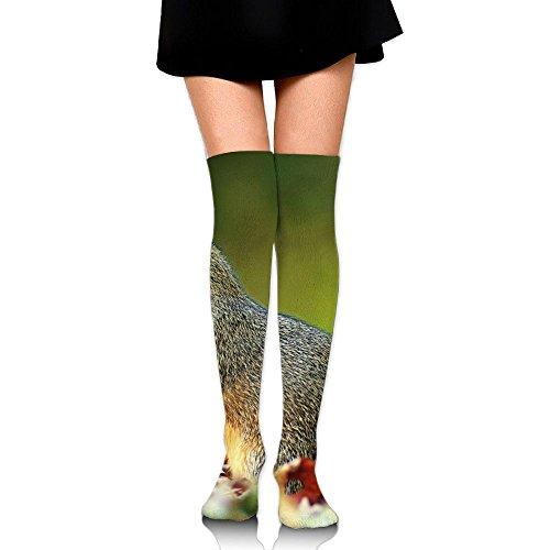 - Playful Squirrel Eat Leisure Crew Top Socks,Tube Thigh-High Nursing Compression Long Socks,3D Printed Sports For Girls&Women