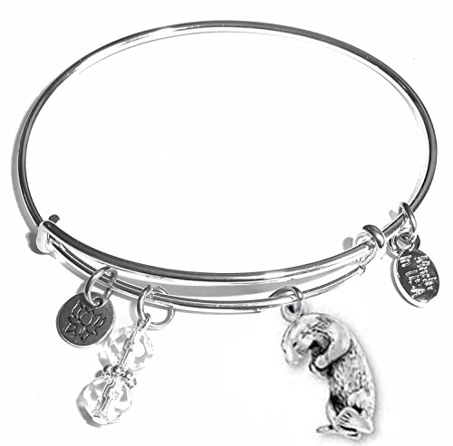 Message Charm (46 words to choose from) Expandable Wire Bangle Bracelet, in the popular style, COMES IN A GIFT BOX! (Otter)