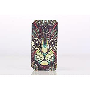 LCJ Coloured Drawing or Pattern Full Body Case with Stand and Card Slot for iPhone 5 5S