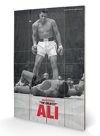 Muhammad Ali Wooden Wall Art 40 x 59 cm Multicoloured