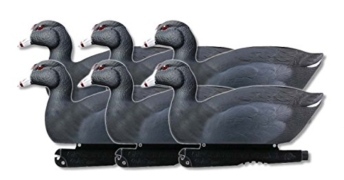 Greenhead Gear Over-Size Duck Decoy,Coots,1/2 Dozen