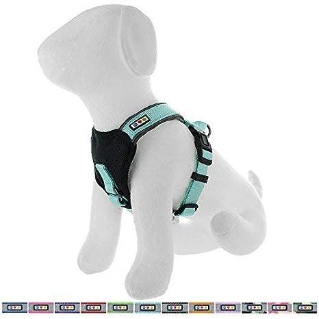 Amazon.com : Pawas Padded Harness Puppy Harness Dog Harness ...