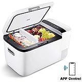 ICECO GO20 12V Dual Zone Portable Refrigerator, Separate Control, 21 Quart/20 Liter, DC & AC, 0℉ to 50℉, with Danfoss Compressor, Mini Fridge Cooler Refrigerator for Outdoor, Home Use, White