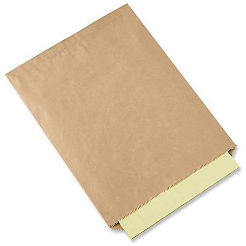 Kraft Paper Bags Flat Merchandise Bags 100 Pack (8.5 In X 11 In)