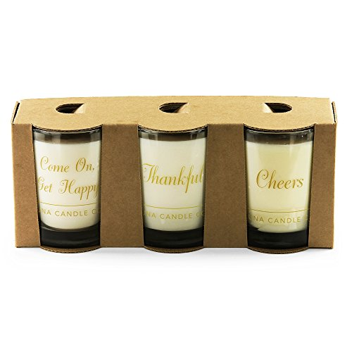 Luna Candle Co. Luxurious Apple Cinnamon, Vanilla and Peach Bellini Scented Jar Candle Gift (Set of 3) Soy Wax, 11oz. Glass, Up To 110 Hours of Burn Time, Handcrafted in the USA- Merci Beaucoup