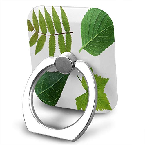 Cell Phone Holder Best Green Leaves Ring Mobile Phone Holder Adjustable 360° Rotation Phone Stand for IPad, Kindle, Phone X/6/6s/7/8/8 Plus/7, Divi, Accessories Desk, Android Smartphone