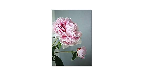 LiMengQi Imagen de Flores Rosadas Cartel nórdico Belleza ...