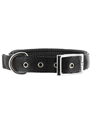 "Galaxy Padded Nylon Dog Collar by Kakadu Pet, Small, 1/2"" x 16"", Black"