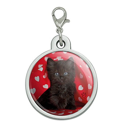 (Graphics and More Black Ragdoll Tiffany Cat Kitten Hearts Love Chrome Plated Metal Pet Dog Cat ID Tag - Large)