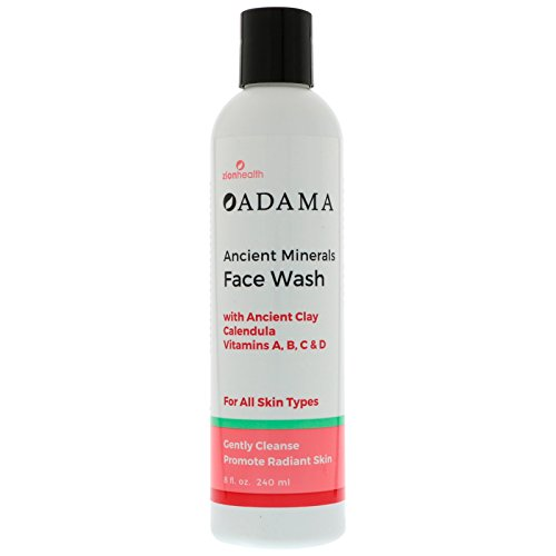 Mineral Face Wash - Adama Minerals Ancient Clay Face Wash 8 Ounces