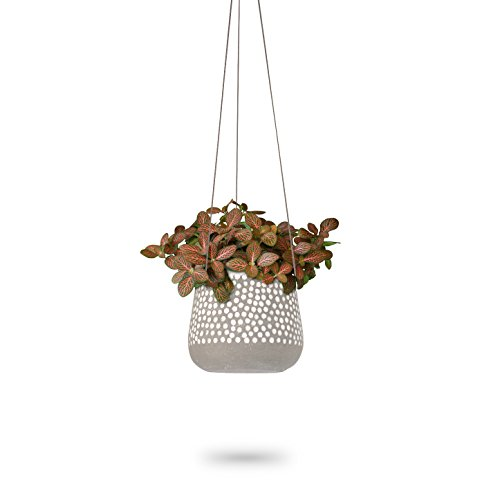 Hanging Planter for Indoor Plants | White Concrete Pots | Round Air Succulent Holder Container | Cactus Pot with Rope Hanger | 23 Bees (1, Shades of Nature (Tan))