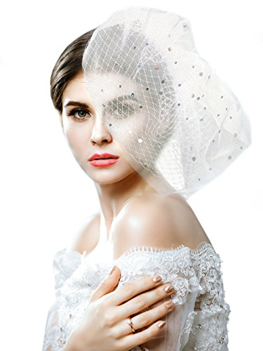 Yean Wedding Bridcage Veil with Comb Floral Laser Sequins Fascinator Netting Short Blusher Veil for Brides (TwoTiers Veil) ()