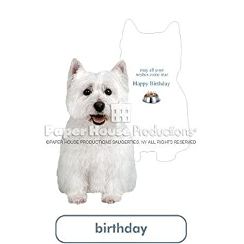 Amazon West Highland White Terrier Westie Paper House