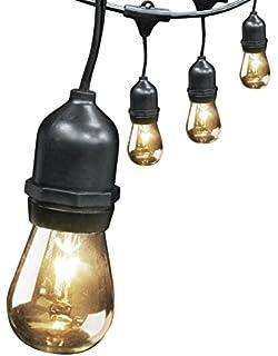 Amazon.com : Feit Electric Indoor/Outdoor String Lights, 48ft ...