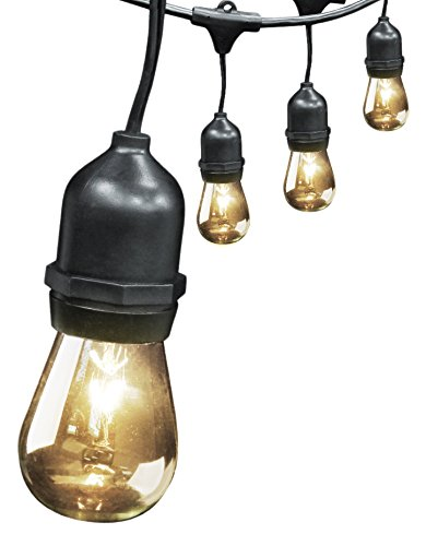 FEIT ELECTRIC 72041 30 Foot Heavy-Duty Weather Resistant Decorative Indoor and Outdoor 10 Sockets Incandescent String Lights, 30', 11W, Dimmable (30' Bistro Set)