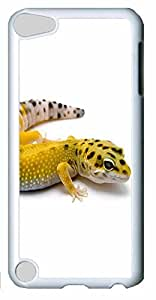 Fashion Customized Case for iPod Touch 5 Generation White Cool Plastic Case Back Cover for iPod Touch 5th with Dolphin
