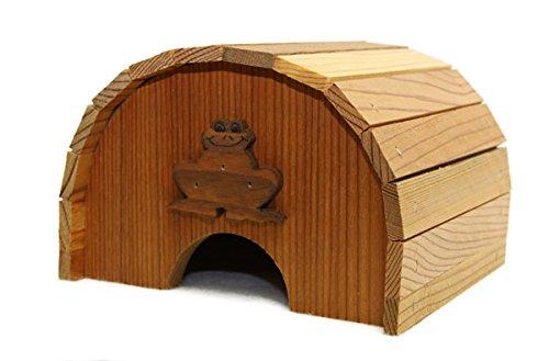 Frog Birdhouse - 7