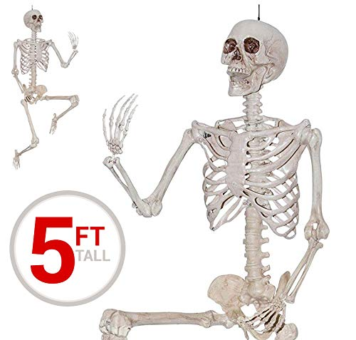 Standing Skeleton - Forum Novelties 18965 5' Pose N Stay Skeleton, Multicolor