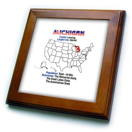 3dRose Alexis Design - American States - Michigan State of The USA, American map, Some Facts, Practical info - 8x8 Framed Tile (ft_307567_1)