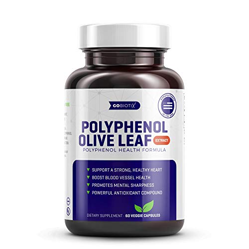 GoBiotix Olive Leaf Extract - Support a Strong, Healthy Heart, Boost Blood Vessel & Immune Health - Powerful Antioxidant - Promotes Mental Sharpness - Non-GMO, Vegetarian, Gluten Free - 60 Vegan Caps