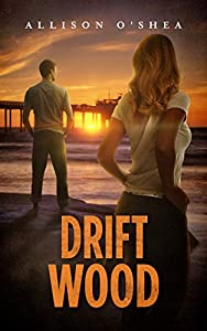 Drift Wood (Layna Wood Book 3)