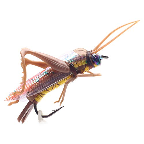 YZD Realistic Grasshopper Dry Fishing Flies Set of 12 Flies Cricket Hopper Fly Fishing Lure Trout Pike Carp Flyfishing (Small D12 Tan)