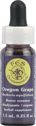 - Flower Essence Services Quintessentials Supplement Dropper, Oregon Grape, 0.25 Fluid Ounce by Flower Essence Services