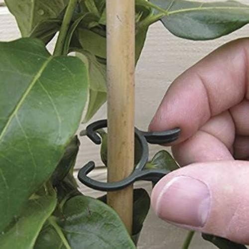 XinKu Lot de 100 pinces de fixation pour plantes portatives