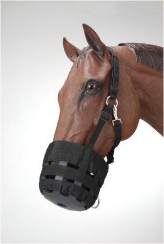 Horses Muzzle - 7