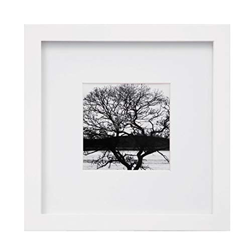 Egofine 8x8 Picture Frame White, Made of Solid Wood for Table Top Display and Wall Mounting Photo Frame