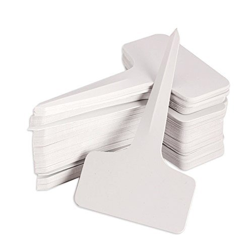 Mini Garden Stake - KINGLAKE 100 Pcs 6 x10cm Plastic Plant T-Type Tags Nursery Garden Labels
