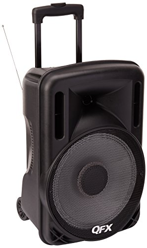 Bluetooth Party PA Speaker