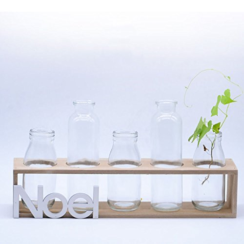 XiYunHan Glass Hydroponics Flower Stand ,Geometry Transparent Vase Container Hand Made Wooden Frame Desktop Flower Pot No Soil Cultivation Plant Home Gardening Bracket Container Decoration Indoor by XiYunHan