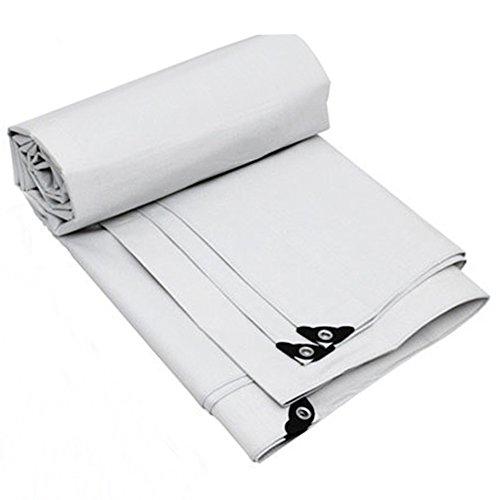 アクロバット扱う宴会JIANFEI 日よけオーニング 遮光断熱材無し強靭工業用ポリエステル糸PVC、2色10サイズ厚さ0.35mm (色 : 白, サイズ さいず : 2.9mx1.9m)