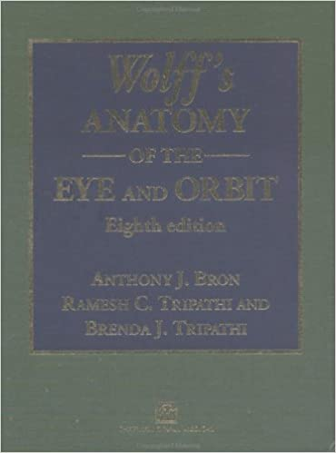 buy wolff s anatomy of the eye and orbit book online at low prices