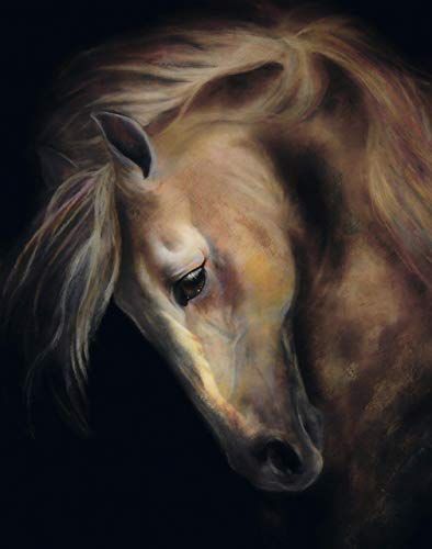 HIS NOBLE STEED - Horse Fine Art Print 11x14 Inches from Original Painting by Art by - Horse Fine Art