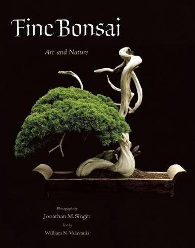 Fine Bonsai  Art And Nature