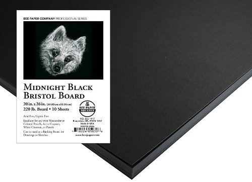 Bee Paper Black Bristol Paper Pack, 20-Inch by 26-Inch, 10 Sheets per Pack