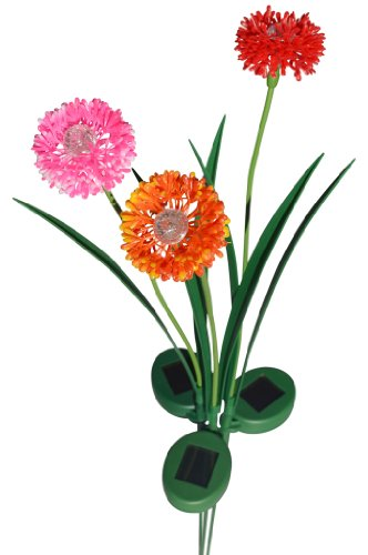 Solaration 1013ORPO Onion Blossom Solar Lawn LED Lights with Pink Orange and Red Flowers, Set of 3 (Light Blossom Three)