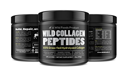 Jay Easy Cushion - Collagen Peptides Powder by Wild Foods | Vital Type I & III Hydrolyzed Pasture-Raised Protein | Non-GMO, Dairy Free, Paleo & Keto, Unflavored (16 Ounce)